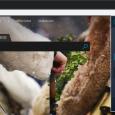 夜间眼睛 - 为任意网站启用夜晚模式[Chrome/Firefox/Edge/Safari/Opera] 4