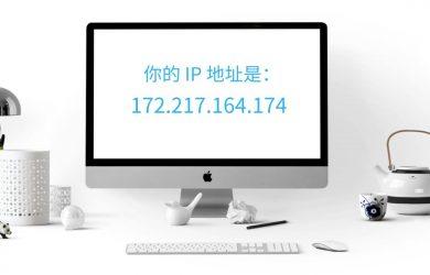 怎么获取家中最新的公网 IP [Windows] 12