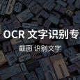 天若 OCR 文字识别专业版本[Win] 4