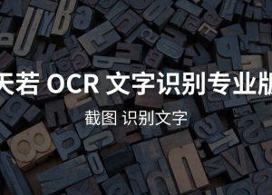 天若 OCR 文字识别专业版本[Win] 10
