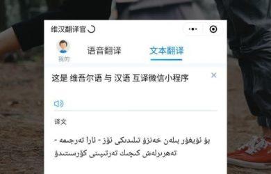 维汉翻译官 - 维吾尔语与汉语互相翻译[微信小程序] 12