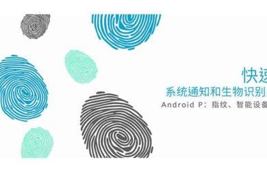在 Android 9 Pie 系统中,快速锁定系统通知、指纹和面部解锁 17