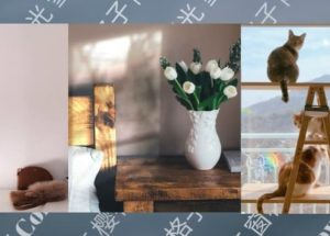 Colorow - 为照片添加彩虹、窗格子、阳光、雪花等真实自然滤镜效果[iPhone] 43