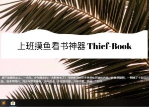 Thief-Book - 上班摸鱼神器:在屏幕小区域上阅读小说[Win/macOS/VS Code] 12