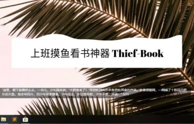 Thief-Book - 上班摸鱼神器:在屏幕小区域上阅读小说[Win/macOS/VS Code] 7
