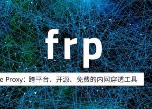 frp - 你也能用的开源内网穿透工具,最简洁教程 19