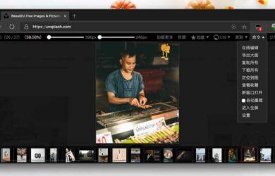 Picviewer CE+ - 批量下载网页图片必备,可对图片旋转、放大、导出原始大图、下载等功能 12