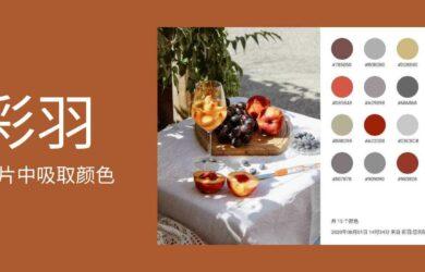 彩羽 - 从图片中吸取颜色,创建色卡、配色方案以及颜色库[Android] 23