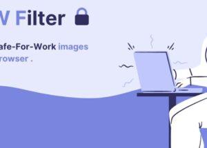 NSFW Filter - 办公室必备插件,用 AI 过滤 NSFW 成人内容[Chrome/Firefox] 16
