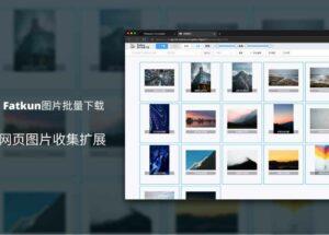 Fatkun图片批量下载 – 没有下载不了的大图,支持 100+ 网页大图[Chrome/Edge]