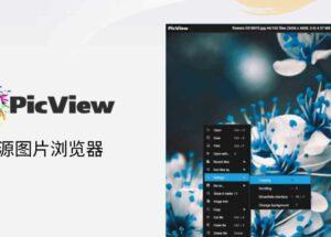 """PicView - 开源图片浏览器,可查看压缩包图片,快速、""""小巧""""[Windows] 11"""