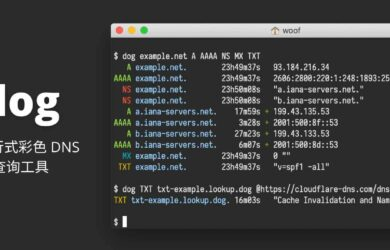 dog - 一个简单的彩色命令行 DNS 查询工具[Win/macOS/Linux] 6