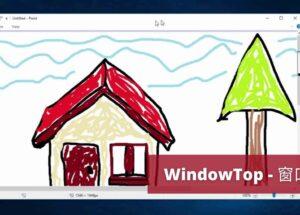 WindowTop - 窗口置顶工具:透明、鼠标穿透、画中画、深色模式、毛玻璃效果,功能有点强 14