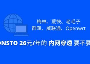 DDNSTO - 梅林、爱快、老毛子,群晖、威联通、Openwrt,26元/年的 内网穿透 要不要? 13