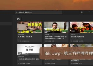 Bili.Uwp - 为 Windows 11 设计,第三方哔哩哔哩 Bilibili 客户端 18