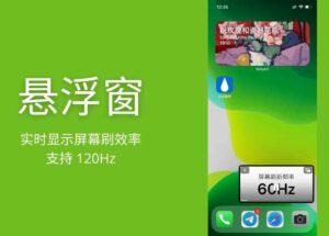 悬浮窗 - 实时显示屏幕刷效率,高刷检测是否支持 120Hz[iPhone] 10