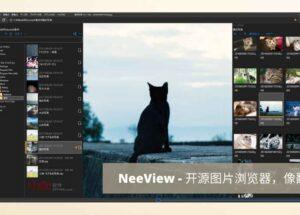 NeeView - 开源图片浏览器,像翻书一样看照片[Windows] 7