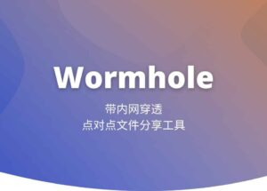 Wormhole - 带内网穿透的点对点文件分享工具[Windows] 11