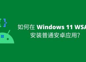 如何在 Windows 11 WSA 中安装安卓应用? 7