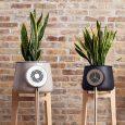 Clairy - 用「真・植物」「可・解毒」的室内空气净化器 61