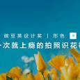 这款拍照识花神器,为你讲述 4000 种浪漫花语   豌豆荚设计奖•形色 5